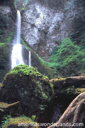 marymere falls olympic national park